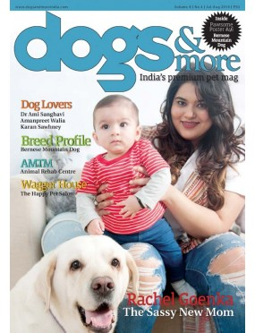 Dogs and more Magazine