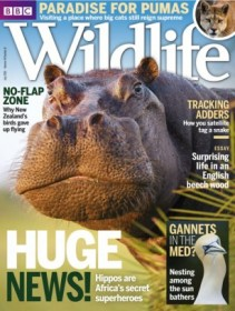 BBC Wildlife Magazine - UK Edition